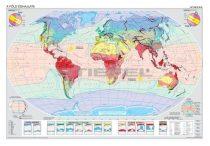 A Föld éghajlata és növényzete DUO
