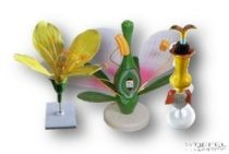 Virágmodell csomag (napraforgó, repce, kétszikű)
