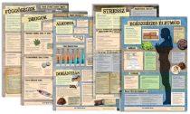Egészségnevelési tablócsomag 1.