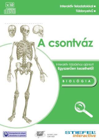 Csontváz - oktató CD