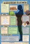 Egészséges életmód - fali oktatótabló